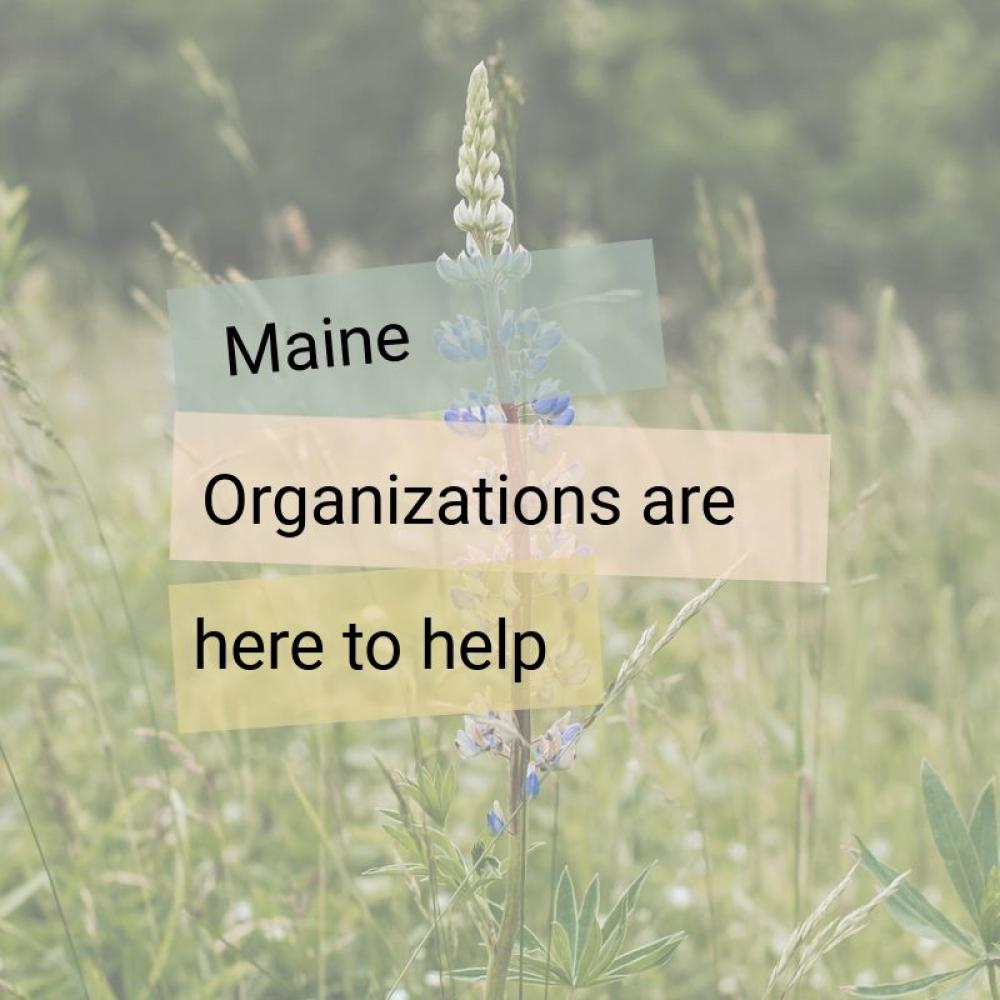 maine organizations are here to help